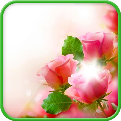 玫瑰動態壁紙 個人化 App LOGO-APP試玩