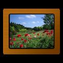 Various Photo Widget icon