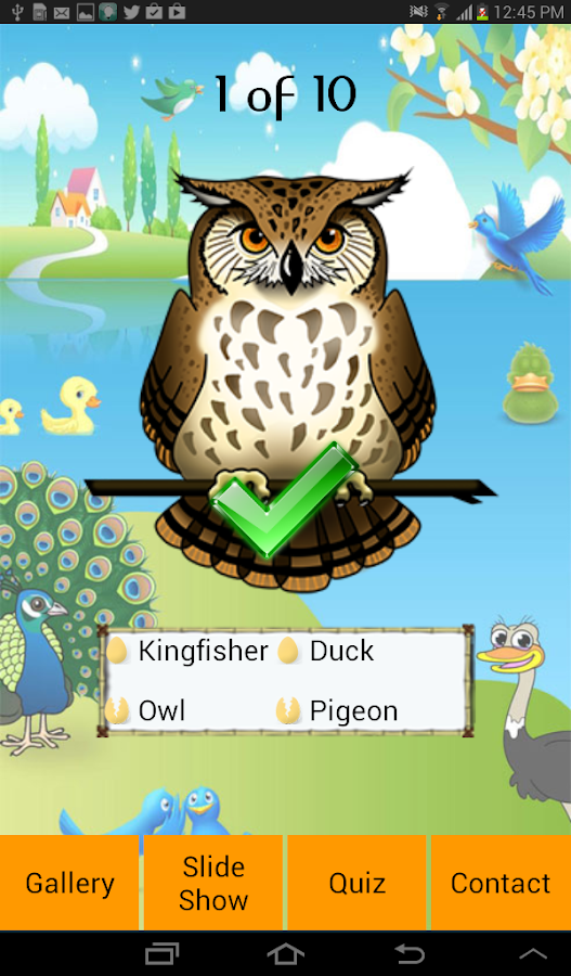 Learning Birds - screenshot