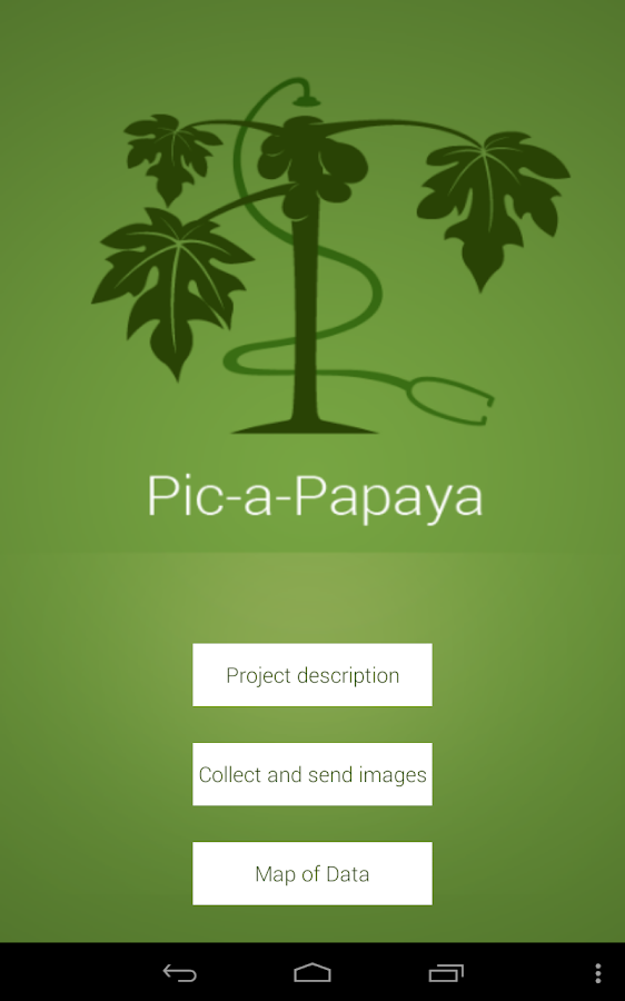 Pic-a-Papaya - screenshot