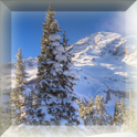 Free Snowflakes LWP for Tablet icon