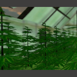 Download Weed 3d Live Wallpaper For Pc