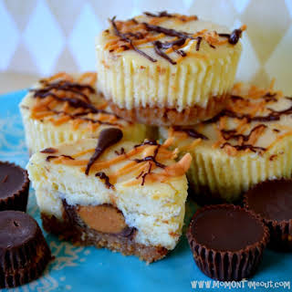 Reese's Peanut Butter Cup Mini Cheesecakes.
