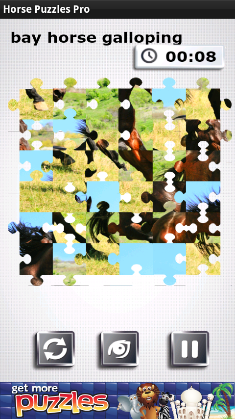 FREE Horse Puzzles - screenshot