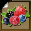 Справочник ягод icon