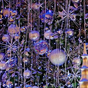 PURPLLE by Jon Radtke - Public Holidays Christmas ( purplle,  )