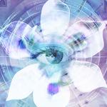 Blue Iris v2.0.10