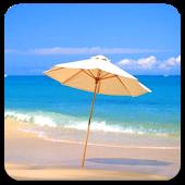 Beautiful beaches Full Theme
