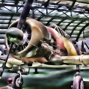 T-6 by Luis Orchevecs Ferenczi - Transportation Airplanes ( air, transport )