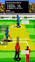 Screenshot of HW Indian League Cricket 2015