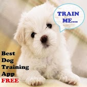 Dog Trainers Guide