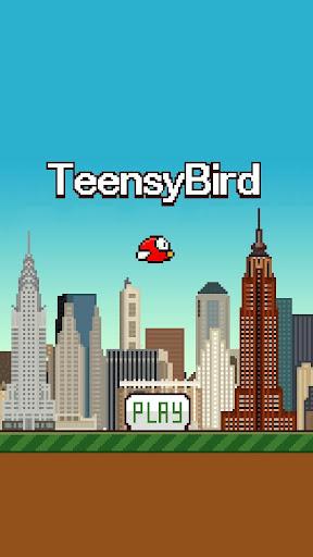 Teensy Bird