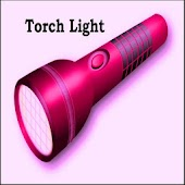 TorchLight With Blink