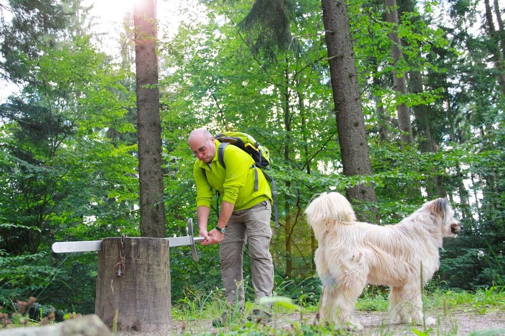Du siehst einen Wanderer am Calwer Schafott, der versucht, das Schwert aus dem Baumstamm zu bekommen. Sein Hund wartet auf Ihn.