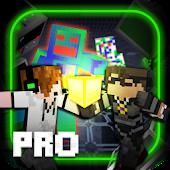 Deadlox vs Sky Mini Game Pro
