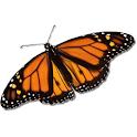 MONARCA RCT logo