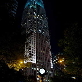 On The Square by Roy Walter - City,  Street & Park  Night ( lights, street, night, city )