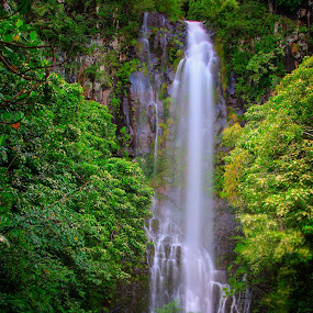 Waterfall  by Eddie Tuggle - Landscapes Waterscapes ( hana, green, waterall, hawaii )