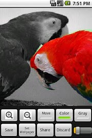 ColorUp Lite Screenshot 1
