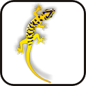 Gecko doo-dad yell/purple logo