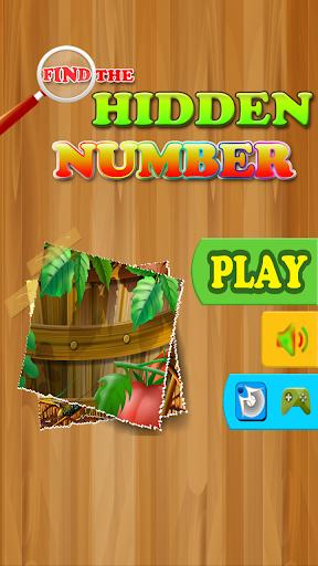 Find The Hidden Number