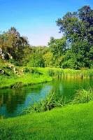 Screenshot of River In Green Scenary Live Wa