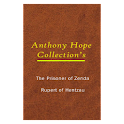 Anthony Hope Collection Books logo