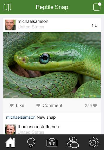 Reptile Snap