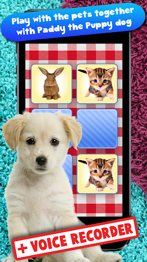 Free Memo Game Pets Photo Kids