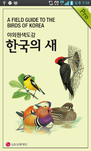 한국의 새 Pro