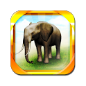 REAL ANIMALS HD (Full) icon