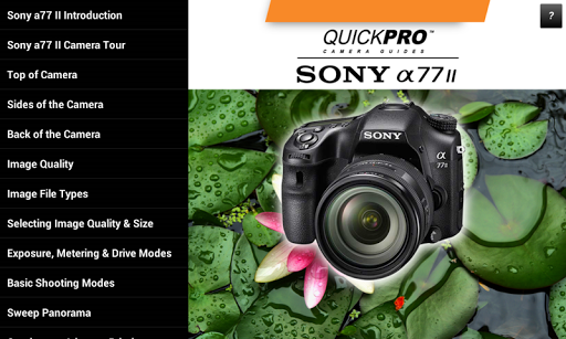 Guide to Sony a77 II