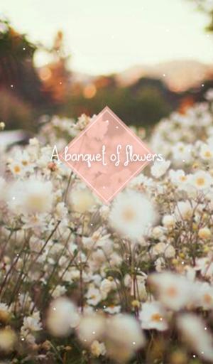 꽃들의 향연 카카오톡 테마