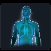 Yoga for Bronchitis