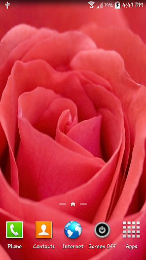 Red Rose LWP shake
