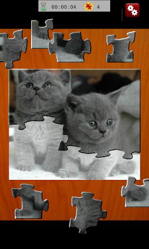 Jigsaw Quest Cats