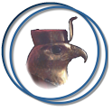 Horus monitoring access icon