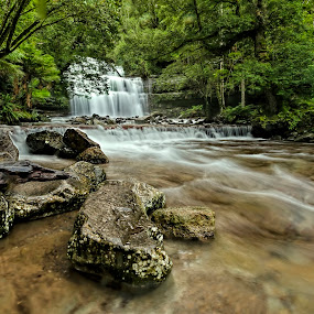 Liffey Falls by Michael Lucchese - Landscapes Waterscapes ( water, tasmania, green, waterfall, australia, nikon, landscapes, photography )