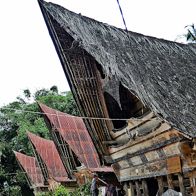 Sigale-gale, North Sumatera, June 2011 by Diadjeng Laraswati H - Buildings & Architecture Homes (  )