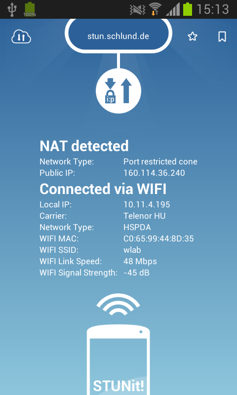 how to know my nat ip