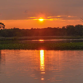 Wicomico River Sunset by Sally Shoemaker - Landscapes Sunsets & Sunrises (  )
