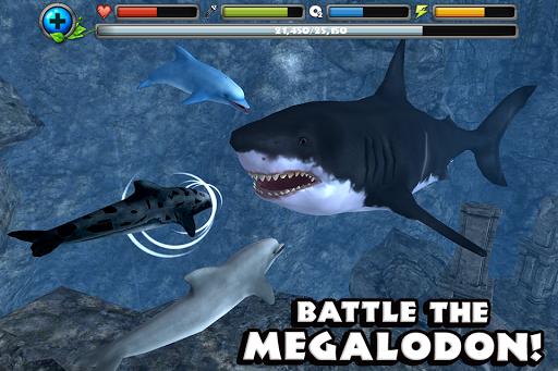Dolphin Simulator image   2
