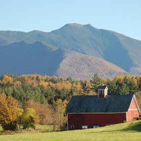 Nicely Nestled by Jim Greene - Landscapes Mountains & Hills ( mountain, barn, autumn, colors, fall )