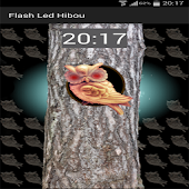 Flash Led Hibou