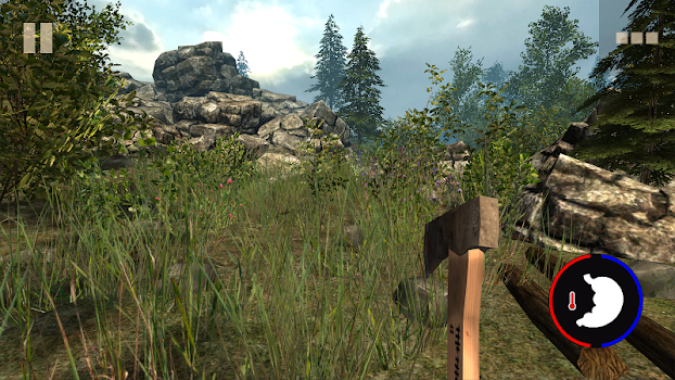Survival Time: Forest