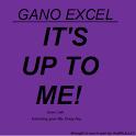 Maine Gano Excel logo
