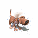 Tricksy Dog icon