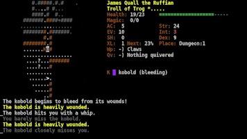 Screenshot of Dungeon Crawl:SS (ASCII)