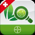 Krankheiten Schweiz icon