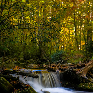 smokey mountains national park 15.jpg